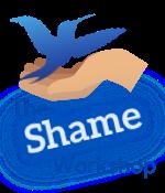 Shame Workshop Logo_3